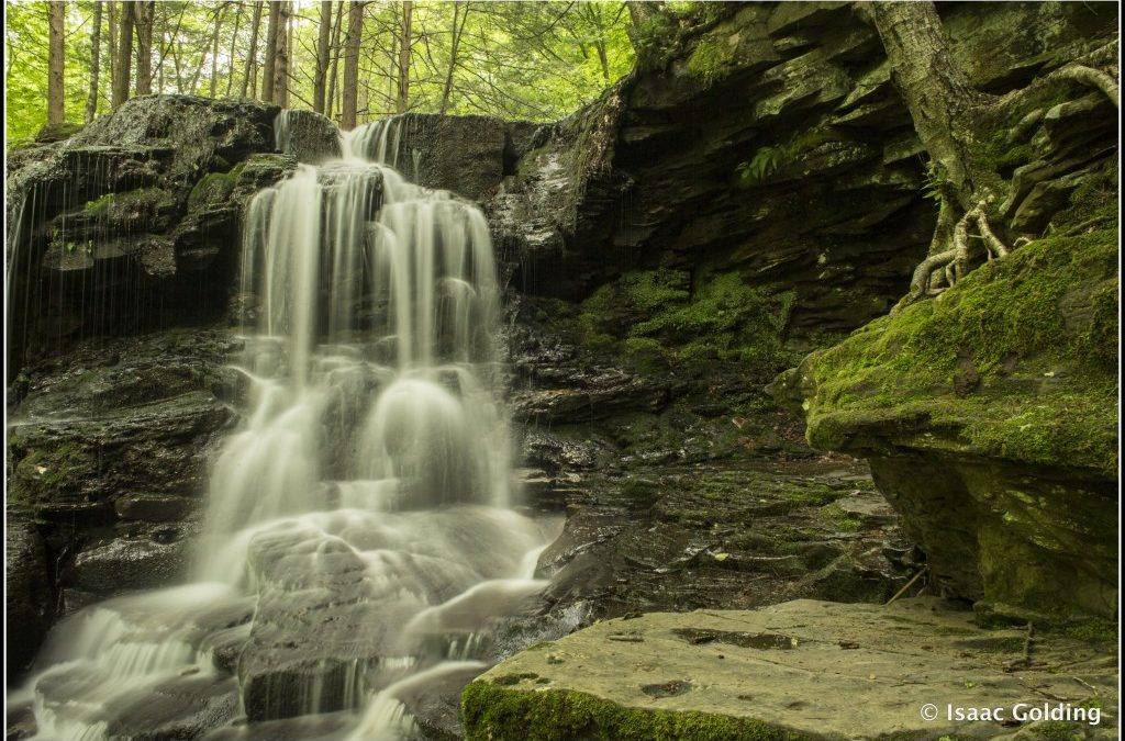 Dry Run Falls & Worlds End State Park